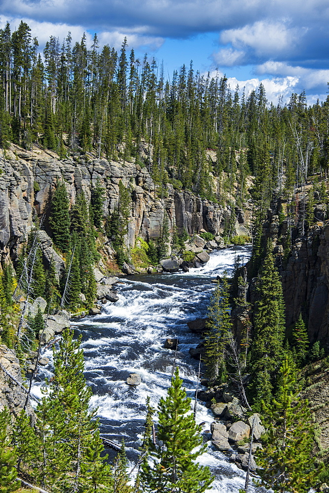 View over the Lewis River, Yellowstone National Park, UNESCO World Heritage Site, Wyoming, United States of America, North America
