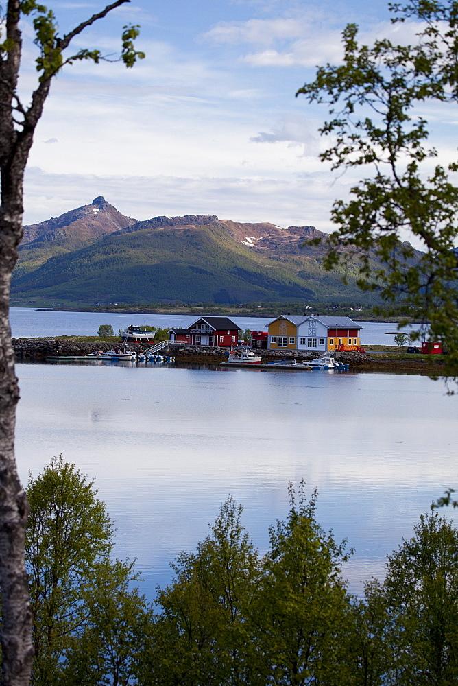 Little harbour in a fjord close to Sortland village, Langoya island, Vesteralen archipelago, Troms Nordland county, Norway, Scandinavia, Europe