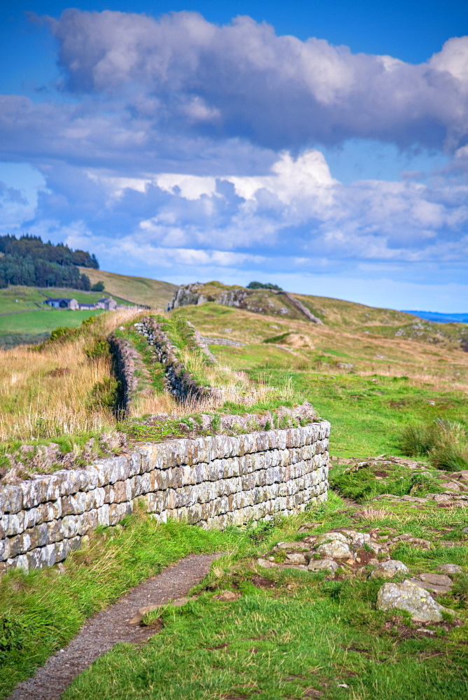 Hadrian's Wall, UNESCO World Heritage Site, Henshaw, Hexham, Northumberland, England, United Kingdom, Europe