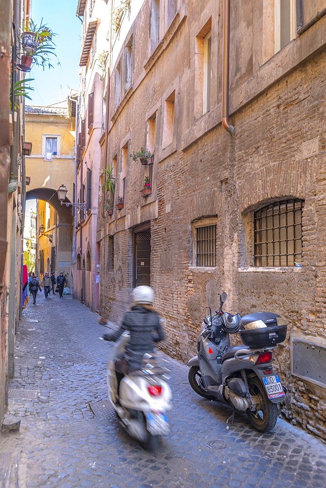 Via Dei Cappellari, Regola, Rome, Lazio, Italy, Europe
