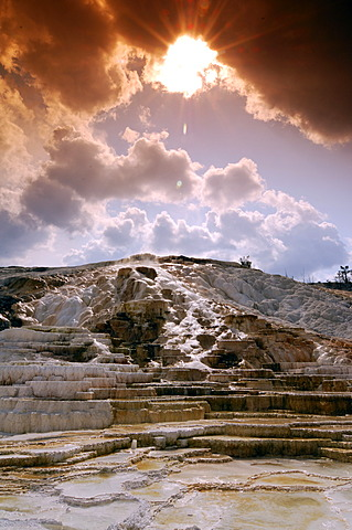Mammoth Hot Springs, Yellowstone National Park, Wyoming, USA, United States of America