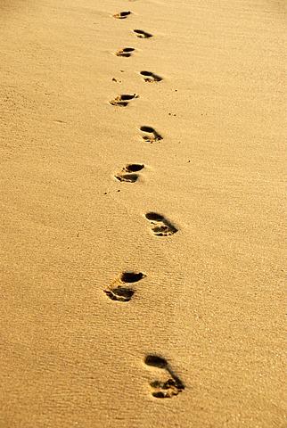 Human footprints, barefoot, footprints in yellow sand, sandy beach, Ceylon, Sri Lanka, South Asia, Asia