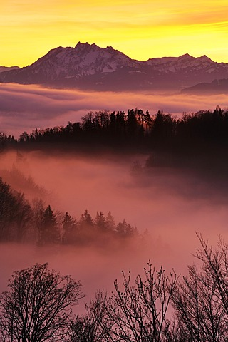 Foggy mood in the evening light with view on Mt. Pilatus, Zug, Switzerland, Europe