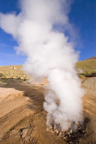 Steaming geyser at the geyser field of El Tatio, Chile