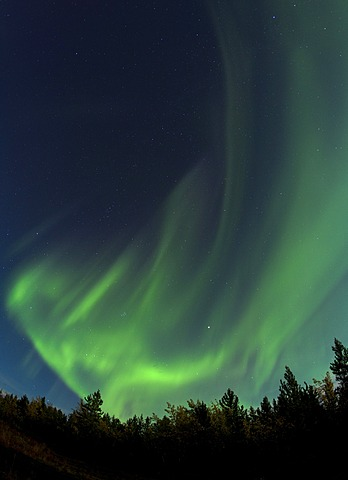Swirling Northern lights, Polar Aurorae, Aurora Borealis, green, near Whitehorse, Yukon Territory, Canada