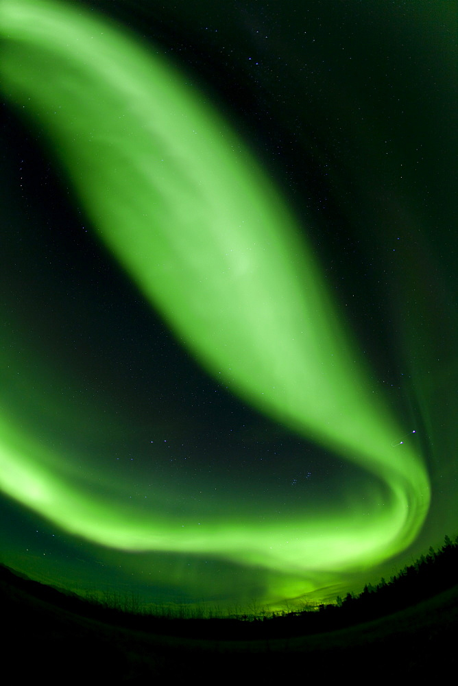 Swirling green northern polar lights, Aurora borealis, near Whitehorse, Yukon Territory, Canada
