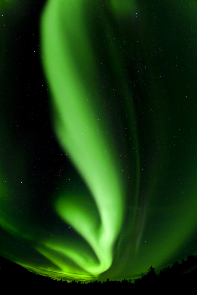 Swirling northern polar lights, Aurora Borealis, green, near Whitehorse, Yukon Territory, Canada