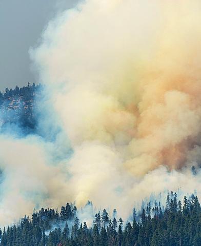 Clouds of smoke of a wildfire, Yosemite National Park, California, USA, North America