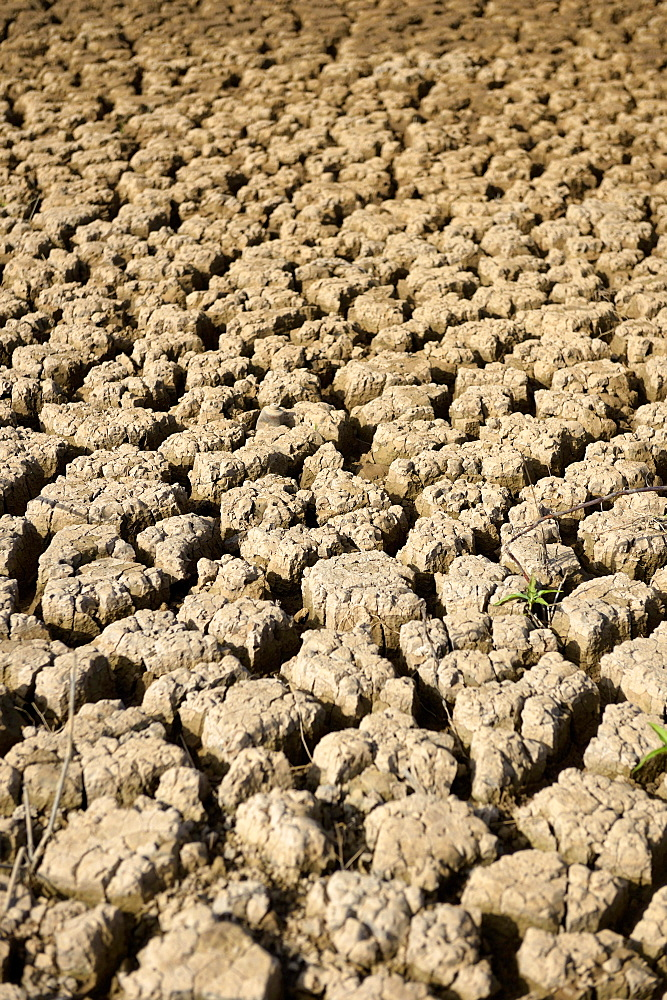 Dry ground on the shore, drought, silting, Jaguari reservoir in Sao Paulo, Brazil, South America