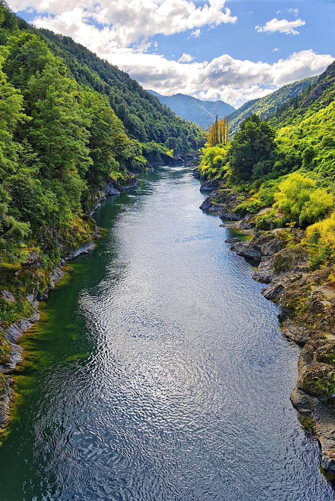 Buller River Gorge, Tasman Region, Southland, New Zealand, Oceania
