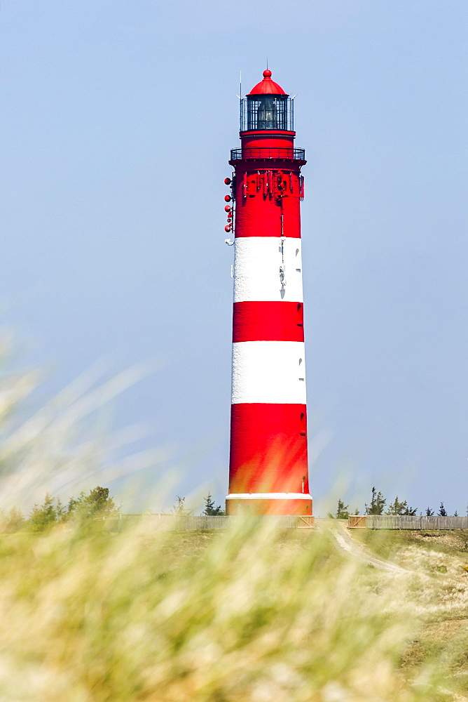 Lighthouse, Amrum, North Frisian Islands, Schleswig-Holstein, Germany, Europe