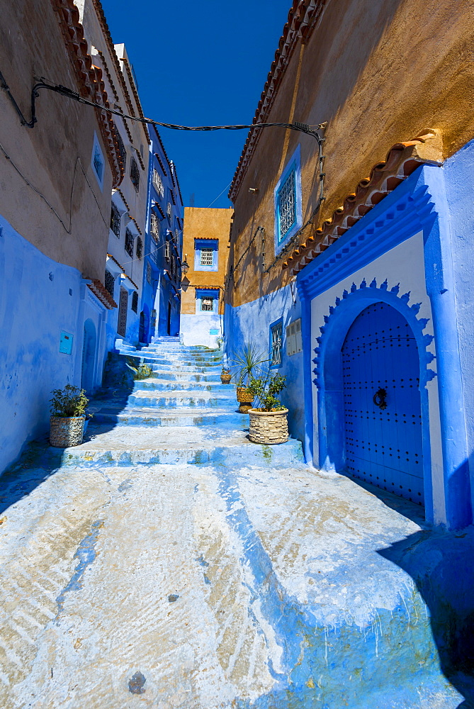 Narrow alley, blue houses, medina of Chefchaouen, Chaouen, Tangier-Tétouan, Morocco, Africa