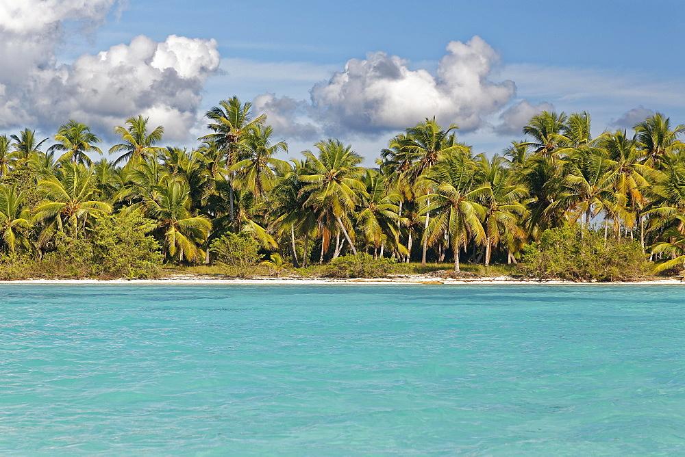 Dream beach, sandy beach with palm trees and turquoise sea, cloudy sky, Parque Nacional del Este, island Saona Island, Caribbean, Dominican Republic, Central America