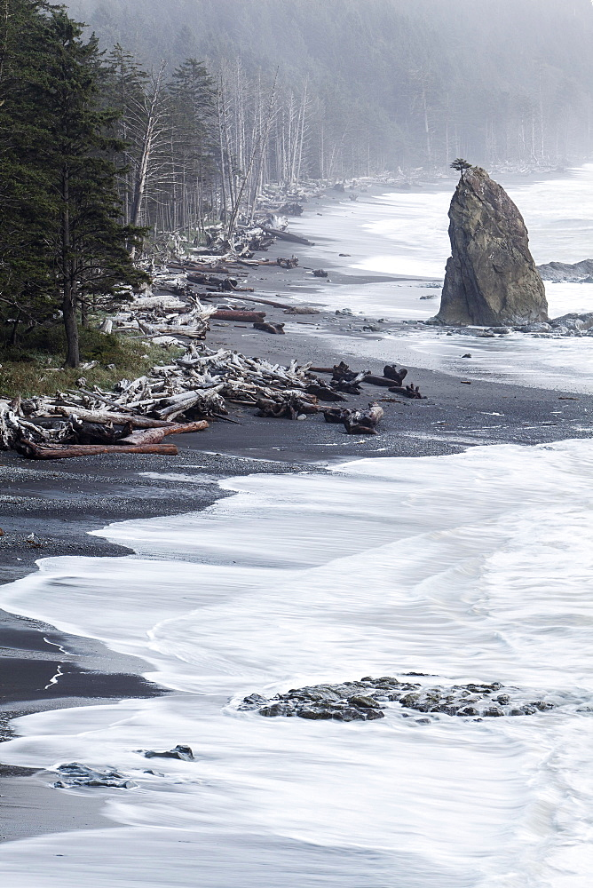 Rialto Beach in Olympic National Park, La Push, Washington, United States, North America