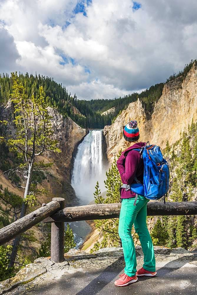 Hiker at Red Rock Viewpoint, Lower Falls, Waterfall in a gorge, Grand Canyon of the Yellowstone River, View from North Rim, Yellowstone National Park, Wyoming, USA, North America