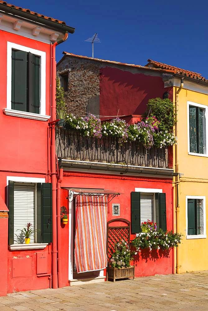 Red house facade decorated with flowers, Burano Island, Venice, Veneto, Italy, Europe