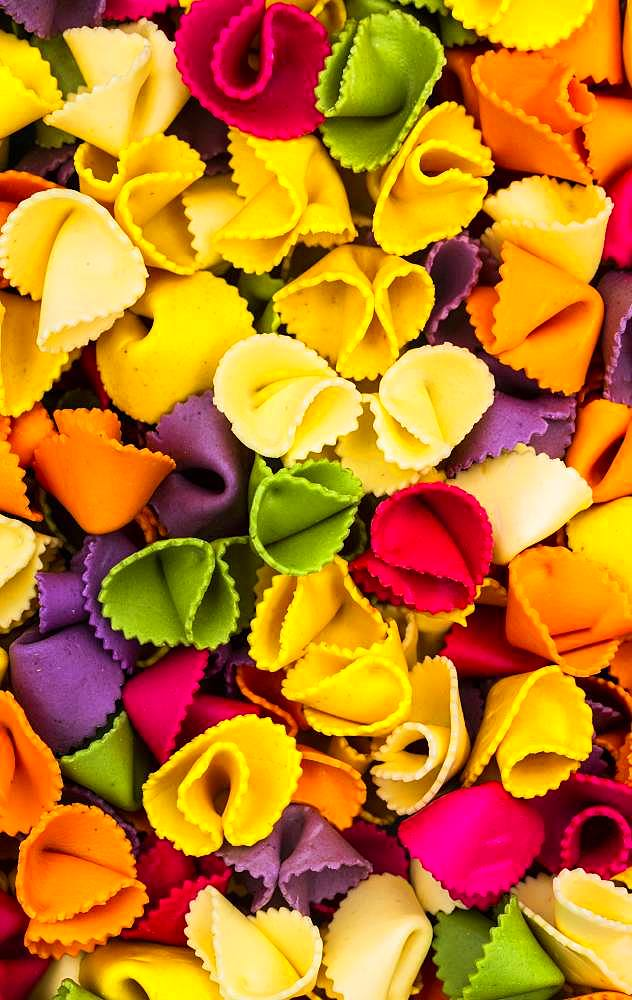 Farfalle, multi colored pasta, Canada, North America