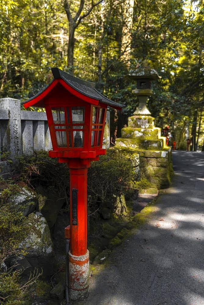 Red Lantern, Hakone Shrine, Shinto Shrine, Hakone, Fuji Hakone Izu National Park, Japan, Asia