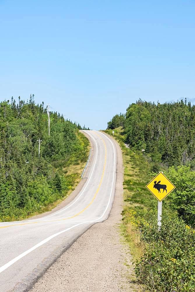 Road sign warns of crossing moose, Cabot Trail, Cape Breton Highlands National Park, Nova Scotia, Canada, North America