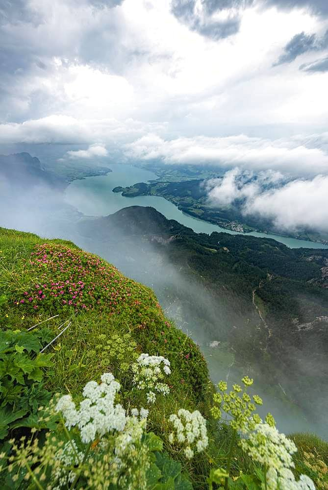 Cloud-covered lake, view of the Mondsee from the summit of the Schafberg, Salzkammergut, Salzburg, Austria, Europe