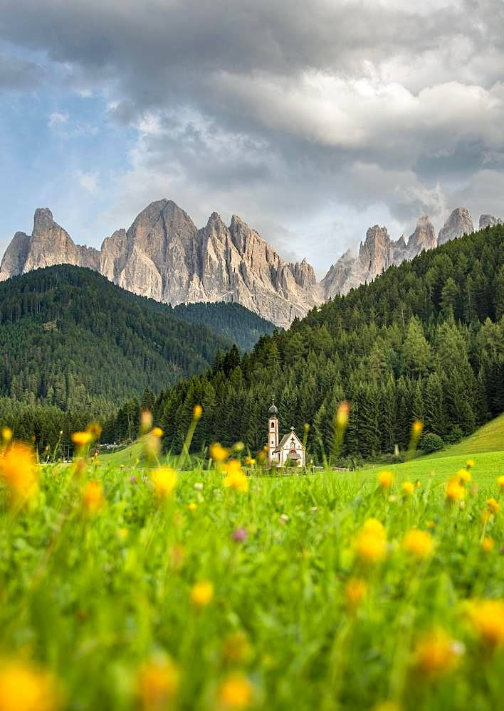 Church of St. John in Ranui with flower meadow, San Giovanni, St. John Chapel, Geisler Group, Villnoess valley, St. Magdalena, Bolzano, South Tyrol, Italy, Europe