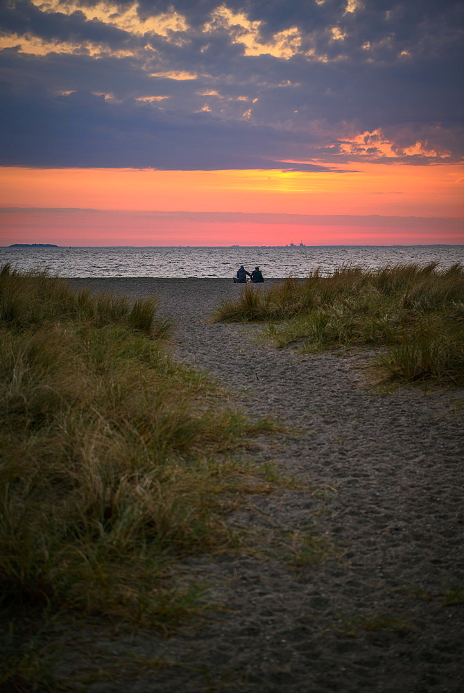 Couple sitting on the beach, Beach landscape with dune grass, Sunrise over the sea, Amager Strand, Copenhagen, Denmark, Europe