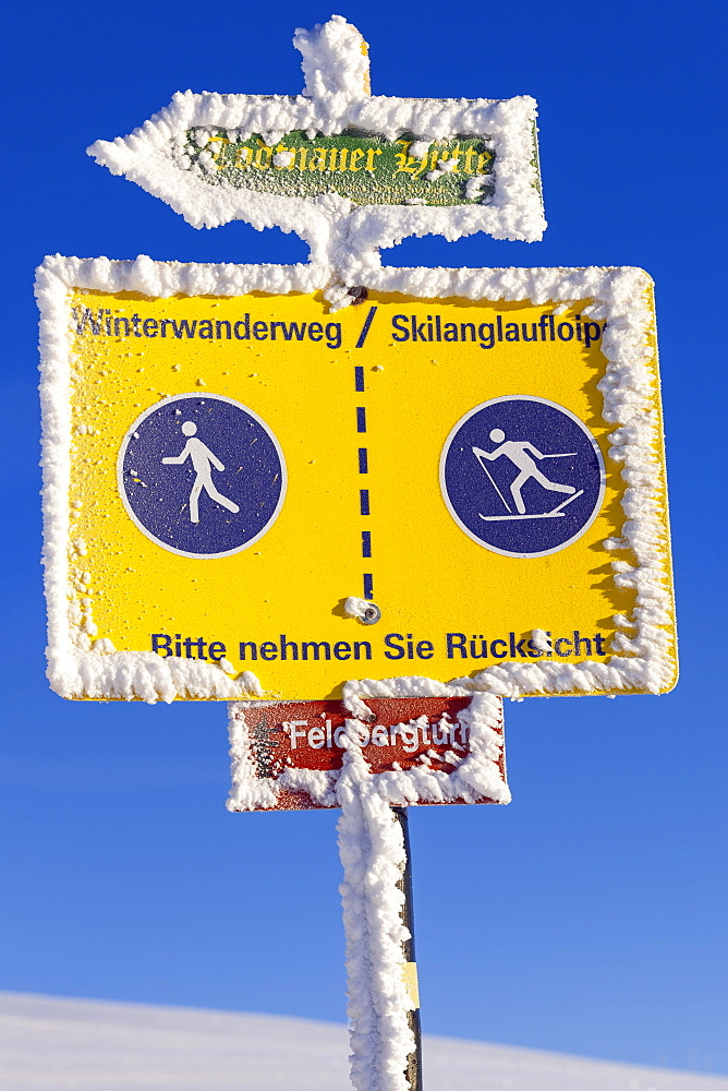 Information boards on the Feldberg, winter sports, Black Forest, Baden-Wuerttemberg, Germany, Europe