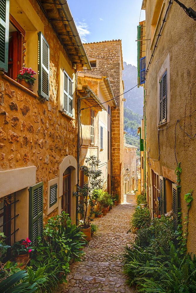 Flowerpots in alley with typical stone houses, Fornalutx, Serra de Tramuntana, Majorca, Balearic Islands, Spain, Europe