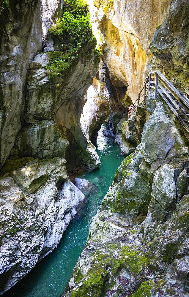 Climbing facility in the dark gorge, Lammeroefen, Lammerklamm, River Lammer, Scheffau, Tennengebirge, Salzburger Land, Province of Salzburg, Austria, Europe - 832-388512
