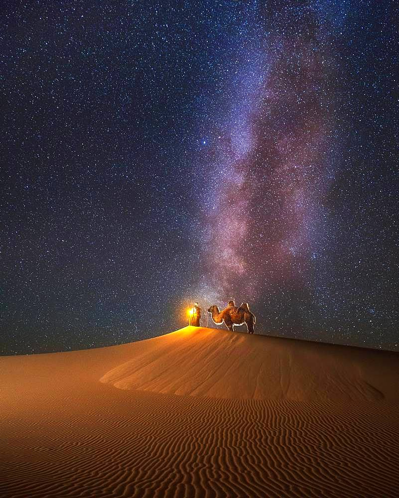 Camel herder under beautiful milky way in Mongolian gobi desert, Umnugobi province, Mongolia, Asia