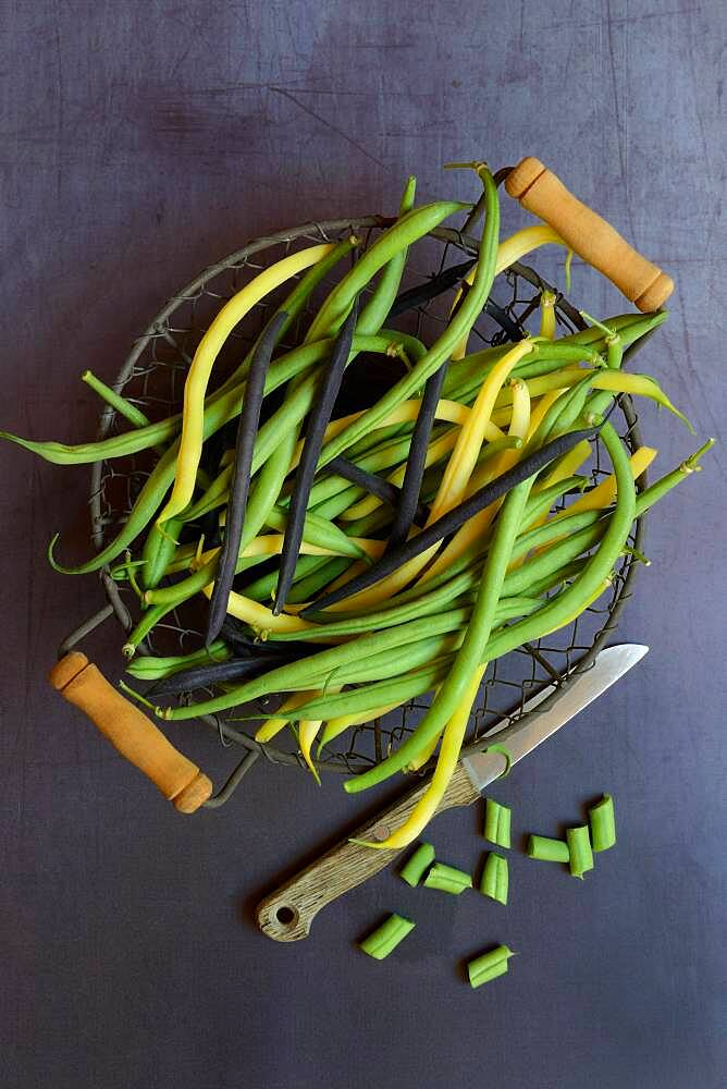 Green, yellow and black beans in wire basket with knife, Germany, Europe