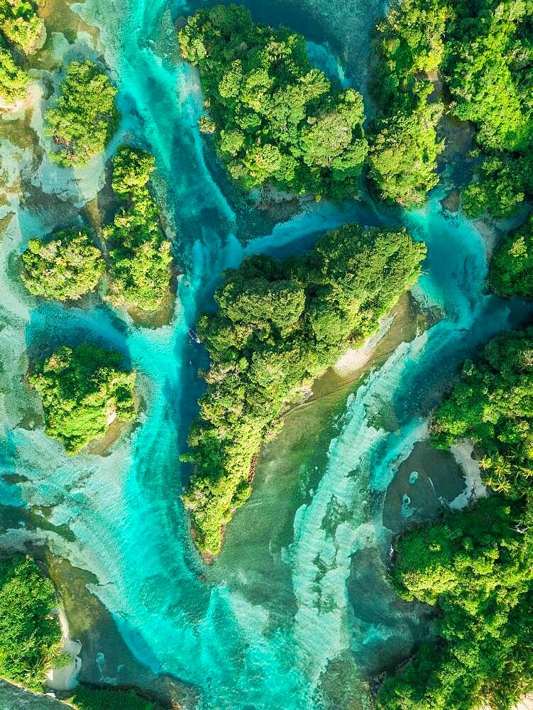 Aerial view, tropical mangrove islands in the Caribbean, Escudo de Veraguas, Panama, Central America - 832-389128