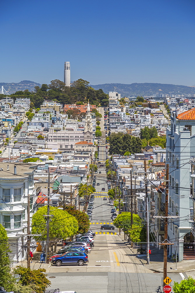 View of Coit Tower from Russian Hill, San Francisco, California, United States of America, North America - 844-17006