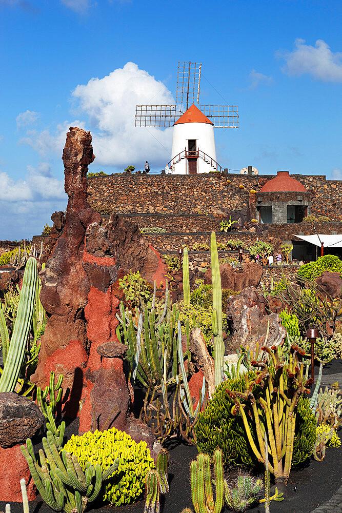 Jardin de Cactus (Cactus Garden), Guatiza, Lanzarote, Canary Islands, Spain - 846-911
