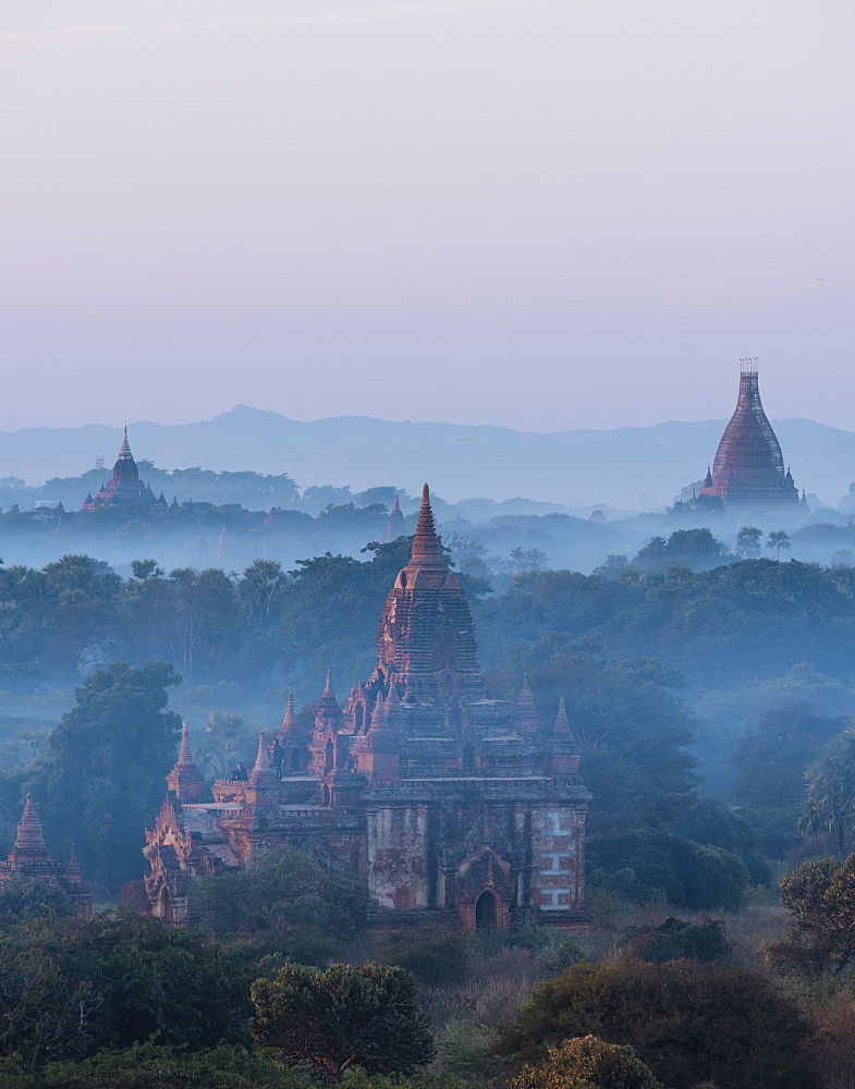 View of Temples at dawn, Bagan (Pagan), Mandalay Region, Myanmar (Burma), Asia