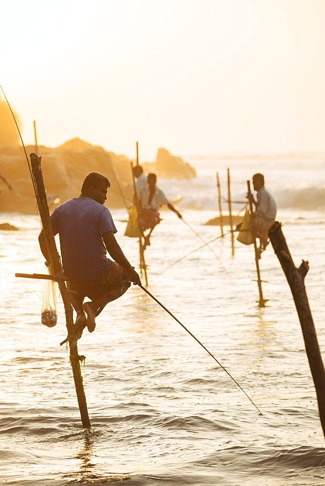 Stilt Fishermen at dawn, Weligama, South Coast, Sri Lanka, Asia - 848-1837