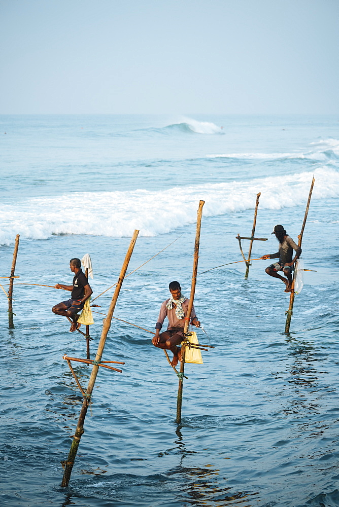 Stilt Fishermen at dawn, Weligama, South Coast, Sri Lanka, Asia - 848-1840