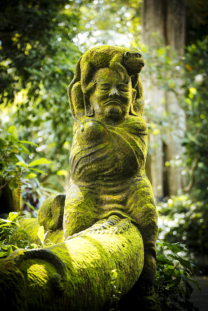 Monkey Forest Sanctuary, Ubud, Bali, Indonesia, Southeast Asia, Asia - 848-1900