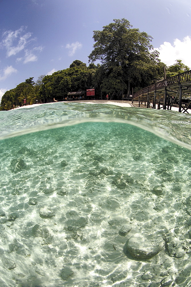 Over/sub surface view tropical island. Borneo, Malaysia (A4 only). - 973-74