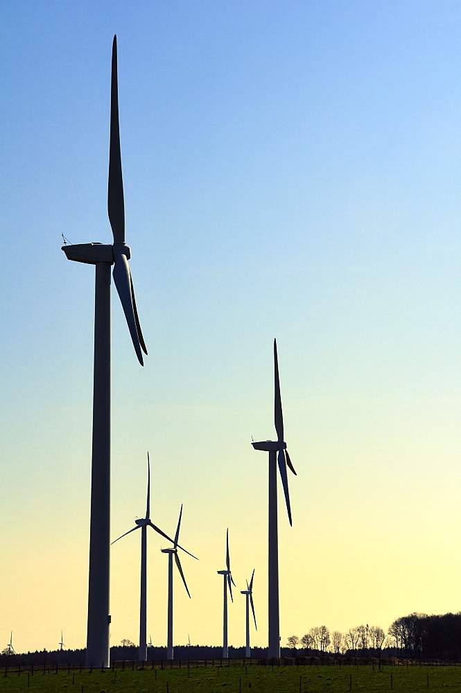 Wind farm silhouetted at dawn, Eaucourt-sur-Somme, Picardie, France. - 989-53