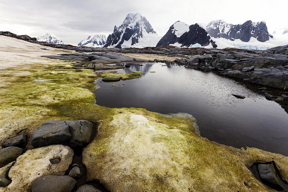Landscape, Antarctic Peninsula, Antarctica