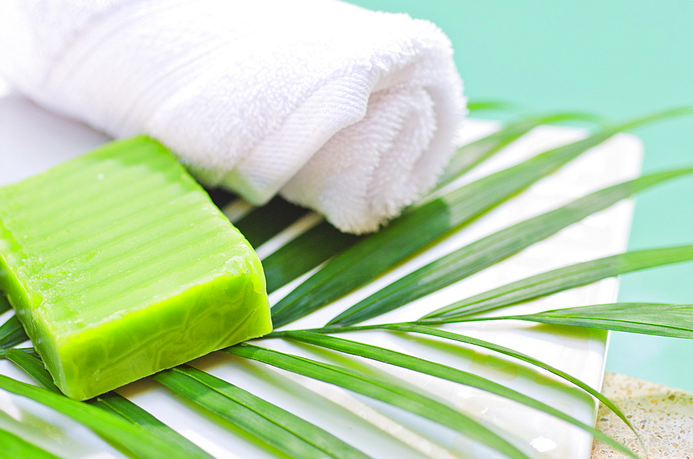 Soap, towel and palm leaf