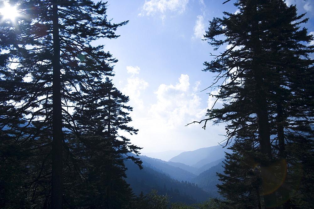 Smoky Mountain National Park USA
