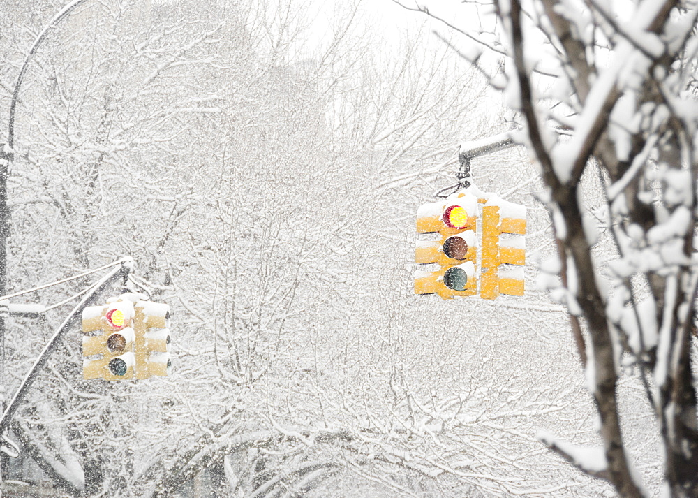 USA, New York State, Brooklyn, Williamsburg, street lights and snow covered trees
