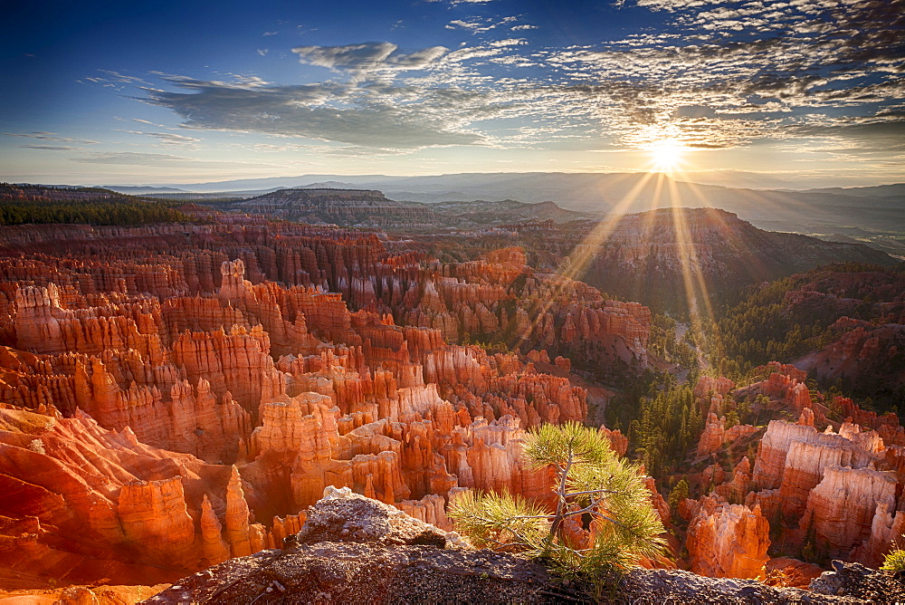 Sandstone formations at sunset, Sunrise in Bryce Canyon National Park, Utah