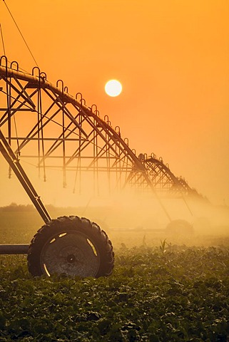 Silhouette of irrigation system with sun setting in the background, Alliance, Nebraska