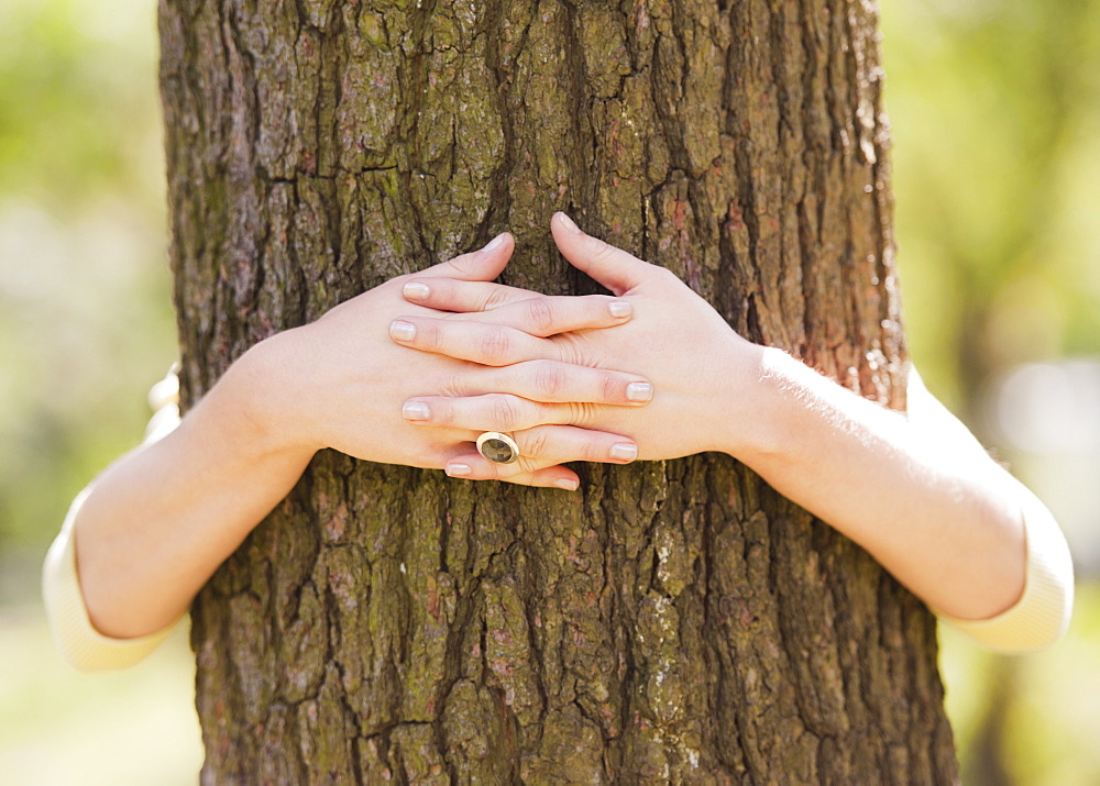 Close up of woman's hands embracing tree