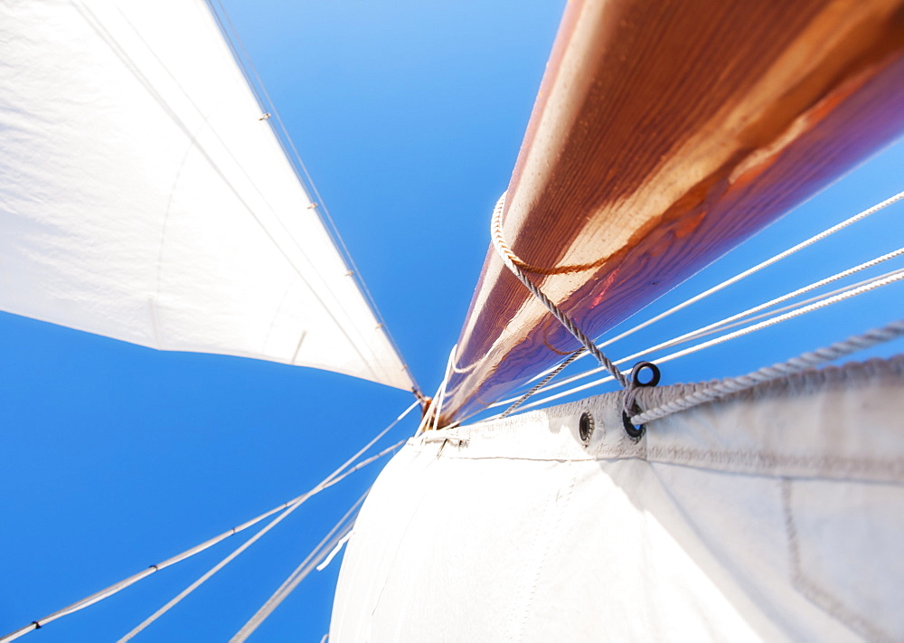 Low angle view of yacht sails and mast