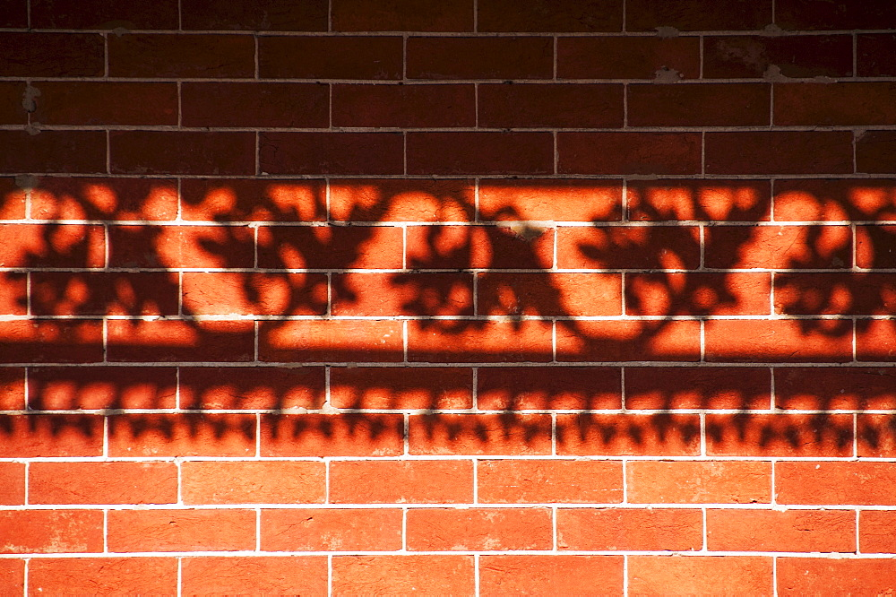 Shadow of railing on brick wall, USA, Louisiana, New Orleans