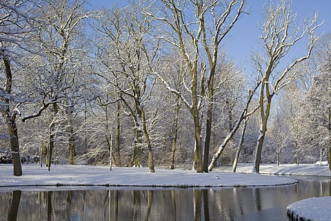 Winter scene in local park, Netherlands, Amsterdam